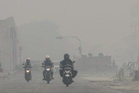 Gubernur Kalteng: Kami Siap Tanggung Jawab Karhutla, Asal Didanai Pusat