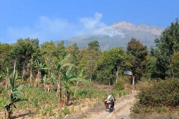 Hutan Gunung Sumbing Kembali Membara
