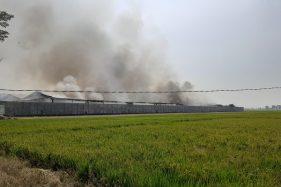 Kebakaran Gudang Kapas Sritex Belum Padam, Asap Hitam Jadi Tontotan