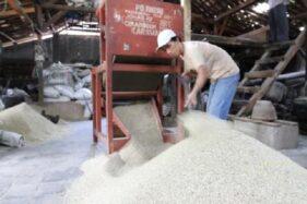 Produksi Beras di Jateng Susut 95.250 Ton Disebut Masih Surplus
