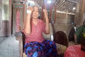 Kisah Nenek 80 Tahun Selamat Dari Serangan Ratusan Tawon di Sragen