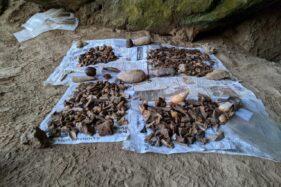 Berbagai temuan purbakala yang dikumpulkan Tim Pusat Penelitian Arkeologi Nasional di Gua Lawa Sampung, Ponorogo. (Istimewa-Gayuh)