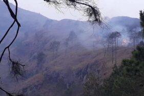 Kebakaran hutan di lereng Gunung Andong, wilayah Dusun Temu, Desa Jogoyasan, Kecamatan Ngablak, Kabupaten Magelang, Jawa Tengah, Minggu (13/10/2019). (Antara-BPBD Kabupaten Magelang)