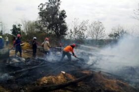 Kebakaran Sragen: 4.500 Ekor Ayam Mati Terpanggang