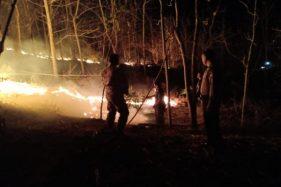 Api Hanguskan 10 Hektare Lahan Hutan Jati di Gesi Sragen
