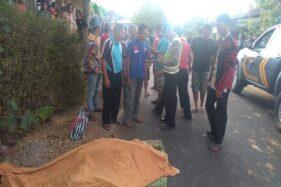 Lokasi kecelakaan tunggal  di Dusun Jaten, Pule, Jatisrono, Wonogiri, Sabtu (12/10/2019) siang. (Istimewa/Humas Polres Wonogiri)