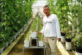 Dudi Krisnadi, pengusaha hortikultura yang mengembangkan kelor di Blora, Jawa Tengah. (Dolanblora.com)