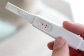 Ilustrasi alat tes kehamilan. (Pinterest)