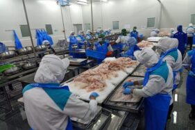 Andalkan Tilapia, Aquafarm Dongkrak Ekspor Perikanan Jateng