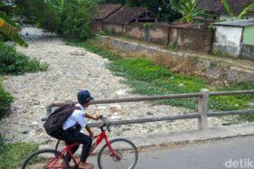 Ih Jijiknya...Usus Ayam dan Sampah Rumah Tangga Penuhi Sungai Ledeng Mojokerto