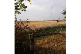 Satu tiang listrik patah dan ambruk setelah diterjang angin kencang di Desa Duwet, Baki, Sukoharjo, Sabtu (16/11/2019). (Solopos/Indah Septiyaning W.)
