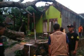 Angin Kencang Sapu 3 Kecamatan di Sragen, 4 Rumah Tertimpa Pohon