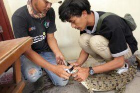 Dua orang pegawai TSTJ Solo melakban mulut buaya muara saat evakuasi di Polsek Tangen, Sragen, Jumat (22/11/2019). (Solopos/Tri Rahayu)