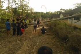 Warga bergotong royong mengevakuasi pohon sengon yang tumbang menimpa bangunan TK di Desa Jendi, Kecamatan Girimarto, Senin (11/11/2019). (Istimea/BPBD Wonogiri)
