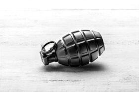 Ilustrasi granat nanas. (freepik.com)