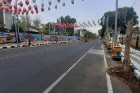 Pohon tabebuya ditanam di sepanjang Jl. Pahlawan, Kota Madiun, Jumat (22/11/2019). (Abdul Jalil/Madiunpos.com)