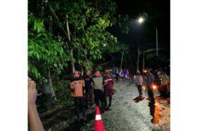 Petugas BPBD bersama warga mengevakuasi pohon tumbang di Desa Ngiliran, Kecamatan Panekan, Magetan, Minggu (10/11/2019). (Istimewa-BPBD Magetan)