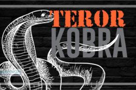 Infografis Ular Kobra (Solopos/Whisnupaksa)