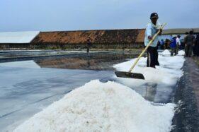Harga Garam di Cirebon Anjlok, Cuma Rp100/Kg