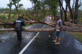 Diterjang Hujan Badai, 44 Rumah di Magetan Rusak