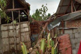Rumah warga Wonogiri rusak akibat tertimpa pohon saat terjadi hujan yang disertai angin kencang, Sabtu (7/12/2019). (Istimewa/BPBD Wonogiri)