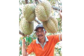 Desa Wisata Durian Ada di Wonogiri, Segera Kunjungi!