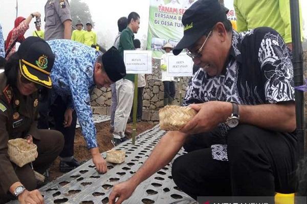 Direktur Sayuran dan Tanaman Obat Kukuhkan Temanggung Jadi Sentra Bawang