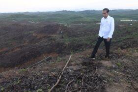 Presiden Joko Widodo (Jokowi) meninjau lokasi calon ibu kota baru di Sepaku, Penajam Paser Utara, Kalimantan Timur, Selasa (17/12/2019). (Antara-Akbar Nugroho Gumay)