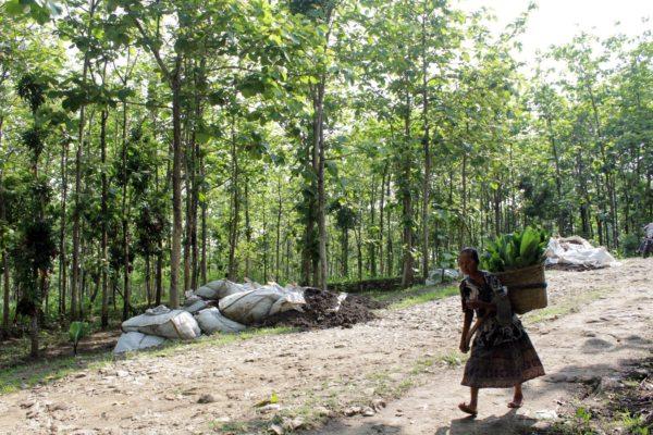 Limbah Padat Misterius Resahkan Warga Perbatasan Sragen-Grobogan