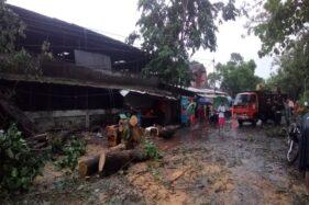 Hujan Deras, Pohon Tumbang Melintang di Jl. Tentara Pelajar Solo