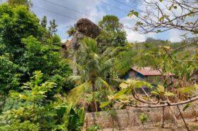 Batu besar terdapat di pekarangan warga di Godean RT 004/RW 002, Sendang, Kecamatan Wonogiri, Kabupaten Wonogiri, Sabtu (30/11/2019). (Solopos-Rudi Hartono)