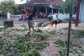 Atap Masjid dan 8 Rumah di Madiun Rusak Tertimpa Pohon Roboh