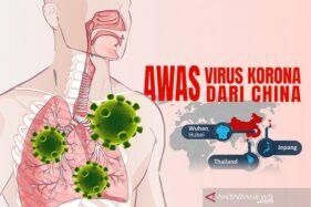Virus Pneumonia Wuhan. (Antara)