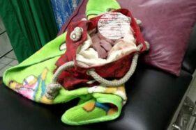 Ortu Buang Bayi di Ngemplak Boyolali Terancam 5 Tahun Penjara