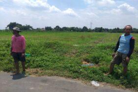 Petani melihat lahan pertanian di Kapungan, Polanharjo, Klaten, Kamis (23/1/2020). (Solopos/Ponco Suseno)