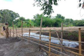 Petugas penyuluh pertanian Balai Penyuluh Pertanian (BPP) Colomadu meninjau lahan di Dusun Mantren, Desa Klodran, Colomadu, Karanganyar, Senin (27/1/2020). (Solopos-M. Aris Munandar)