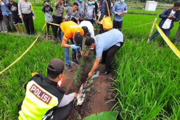 Mayat Bayi Terbungkus Kain Kafan Ditemukan Di Sawah Ponorogo