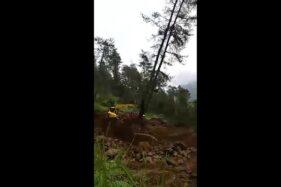 Tangkap layar video alat berat menumbangkan pohon di hutan lindung Gunung Lawu, Karanganyar. (Facebook/Prast Filth)