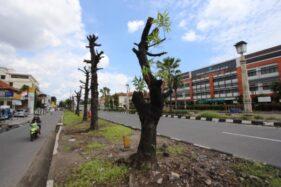60 Pohon Masih Dipertahankan di Lahan Proyek Flyover Purwosari Solo, Ini Alasannya