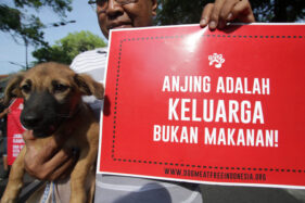 Penjaja Kuliner Anjing di Karanganyar Bertahan Meski Dilarang Berjualan