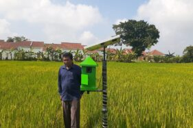 Seorang petani, Suyanto menunjukkan alat pengusir tikus dengan gelombang ultrasonik yang dipasang di lahan sawahnya di Kelurahan Nglames, Kecamatan Madiun, Kabupaten Madiun, Kamis (13/2/2020). (Abdul Jalil/Madiunpos.com)