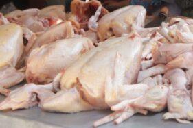 Ilustrasi daging ayam. (Solopos-dok)