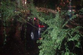 Toyota Innova Ringsek Tertimpa Pohon di City Walk Depan Kantor Asuransi Jasindo Solo