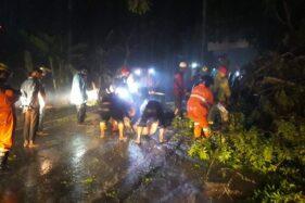 Tabrak Pohon Tumbang, Pengendara Motor Tersungkur di Gedong Karanganyar