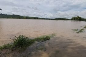 Puluhan Hektare Sawah di Bulu Sukoharjo Kebanjiran