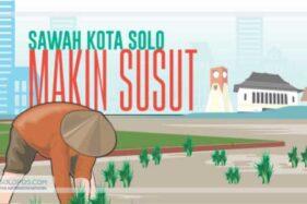 Infografis Sawah Kota Solo (Solopos/Whisnupaksa)