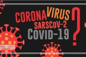 Infografis Corona (Solopos/Whisnupaksa)