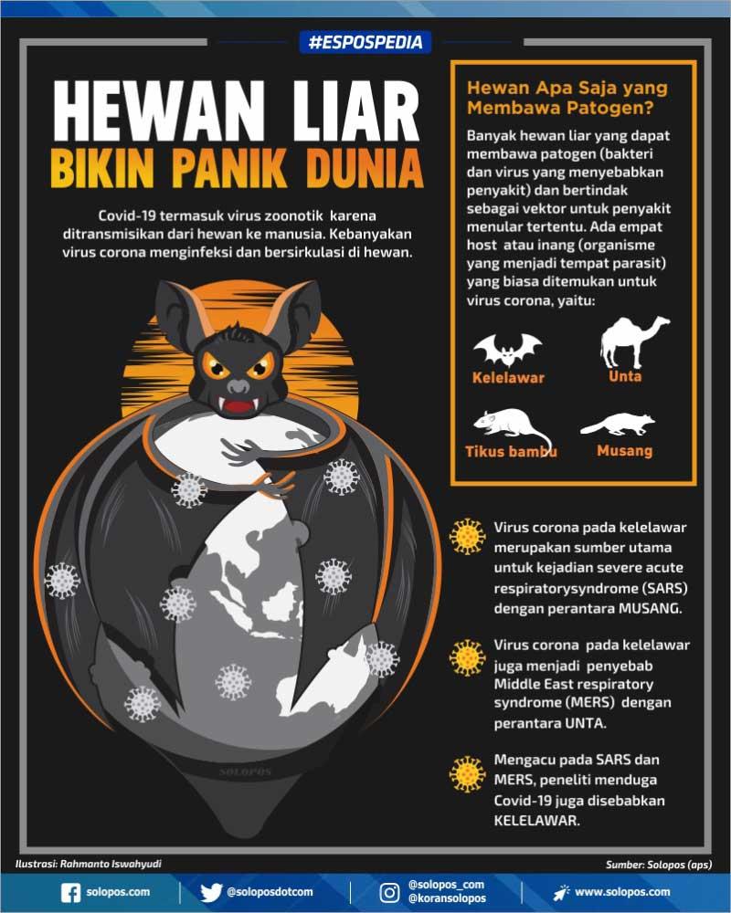 Infografis Virus Hewan Liar (Solopos/Whisnupaksa)