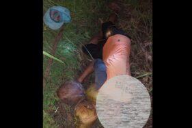 Petani Wonogiri Ditemukan Meninggal di Sawah Sambil Peluk 3 Butir Kelapa