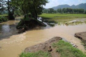 Rapuh & Sering Jebol, Tanggul Sungai Gamping di Cawas Klaten Segera Diperbaiki